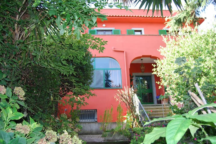 Bed and Breakfast I due Leoni - Marino - Bed & Breakfast