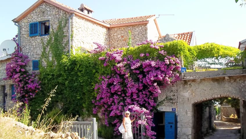 Charming stone Dalmatian villa
