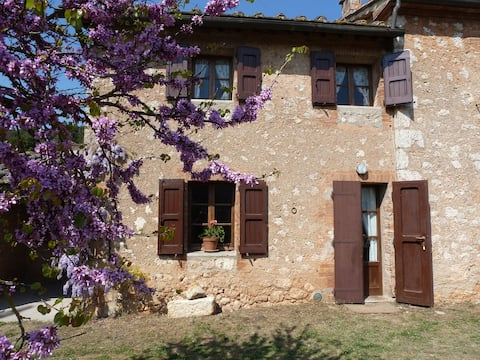 Apartment with pool near Siena