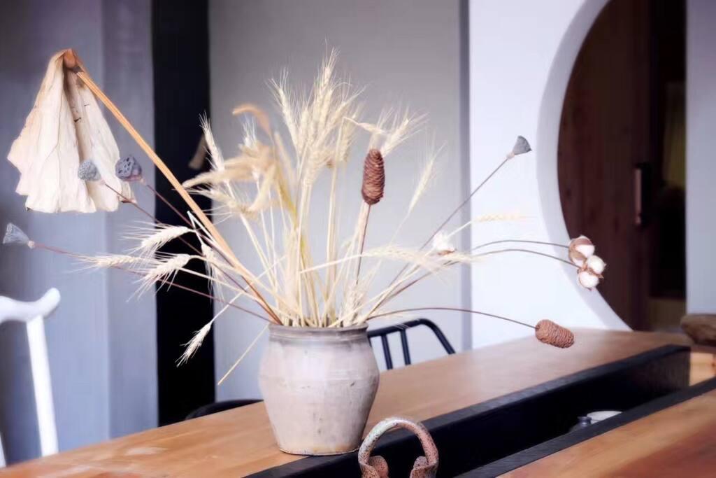 麦子和小松果,朝夕相伴