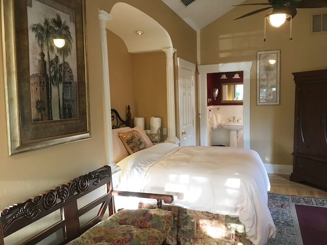 Elegant Queen Suite in Downtown Saint Petersburg