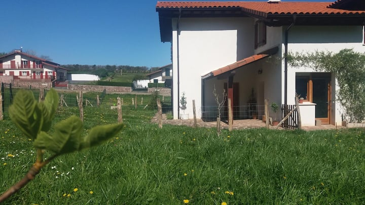 Rural Itaka Room