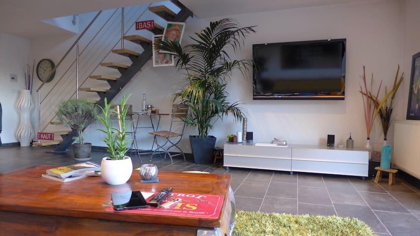 Nice duplex flat - Blotzheim - Apartmen