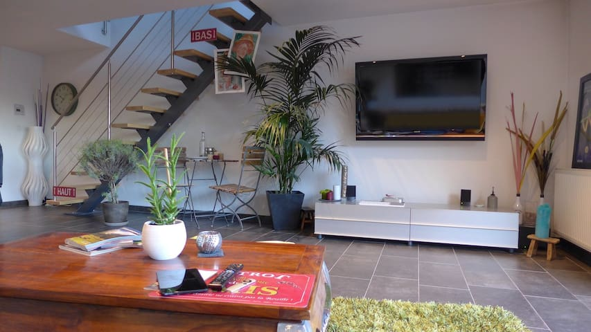 Nice duplex flat - Blotzheim - Apartment