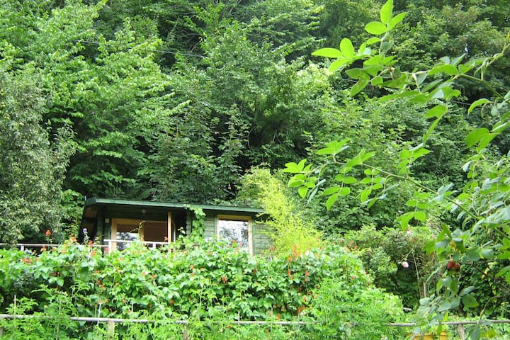 Forest of Dean Cabin: views, +private 2nd bed+bath