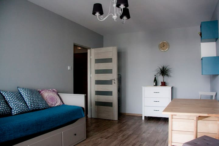 Royal Apartment 52 sqm !!! 109 zl for 4 guests !!! - Warszawa - Apartment