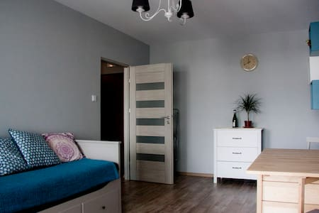 Royal Apartment 52 sqm !!! 109 zl for 4 guests !!! - Warszawa