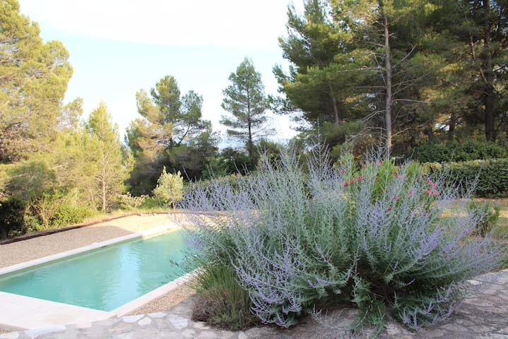 Beautiful mas and pool in Provence - Saint-Saturnin-lès-Apt - Dům