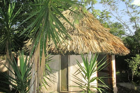 Chaya Maya Jungle Lodge - Cabanas - Teakettle - Bed & Breakfast
