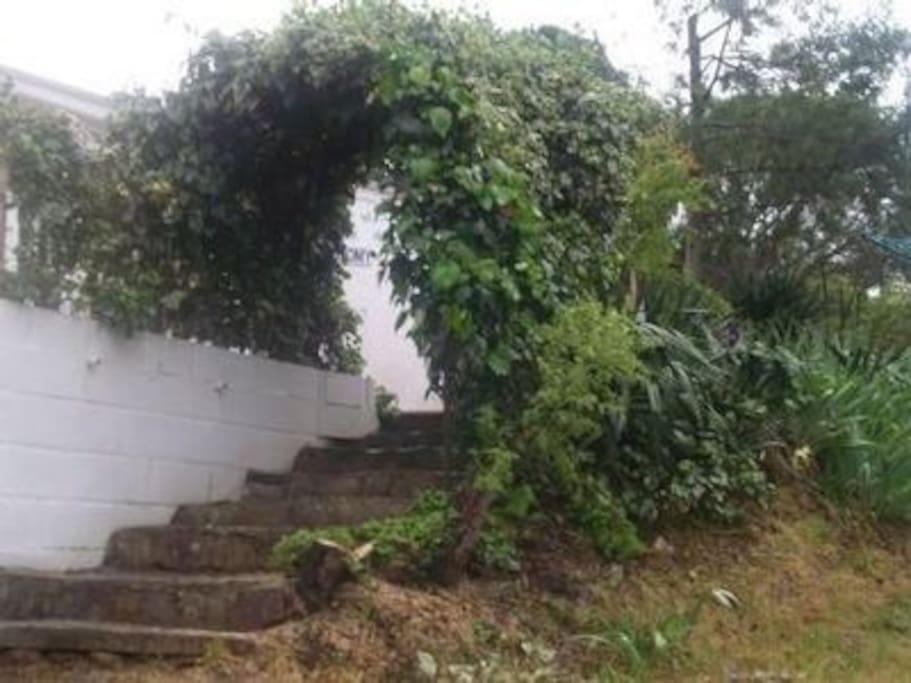 descente au jardin