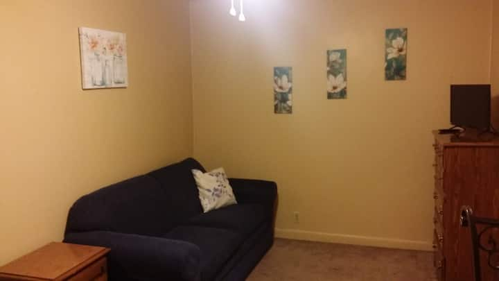Johnson City, TN - Tree Streets Studio Apartment