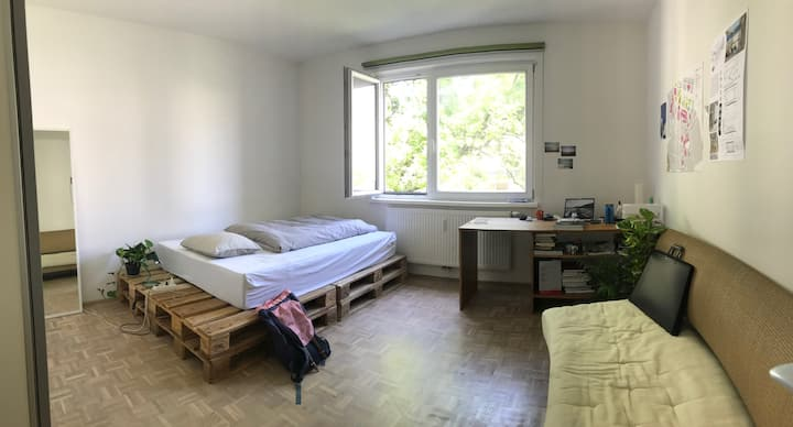 Bright Room in Student Flat avail. during Summer