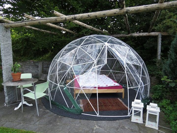 im Bubble-Dome unter dem Sternenhimmel