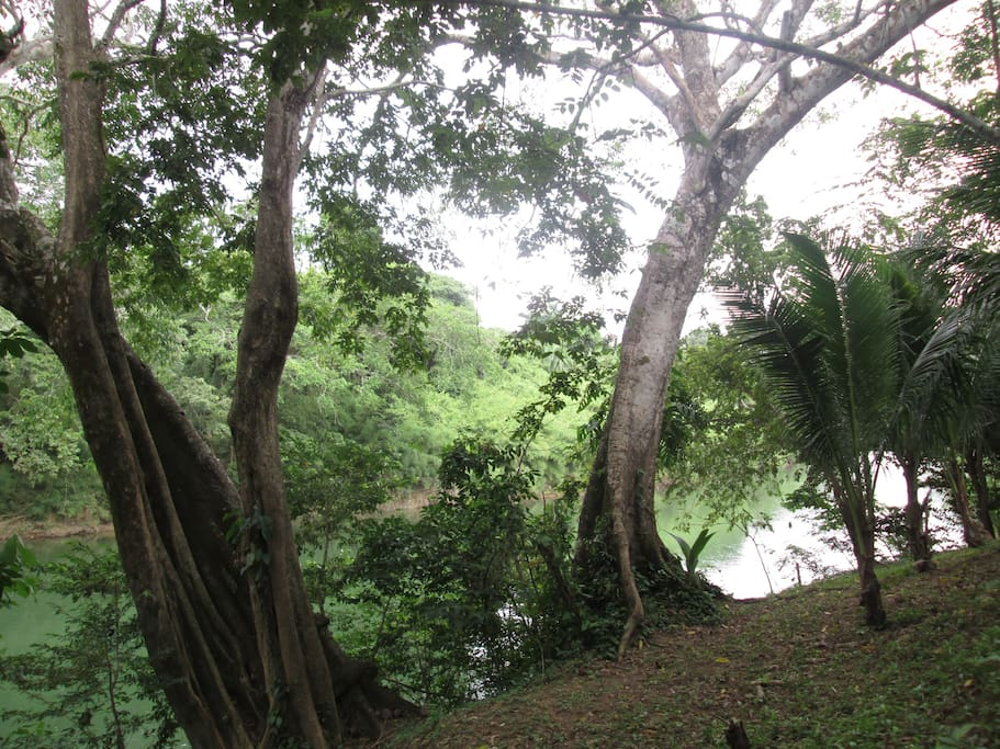 Located on the Belize River