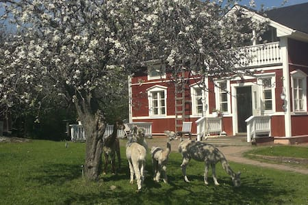 Lovely house in the countryside - Karjaa - Bed & Breakfast