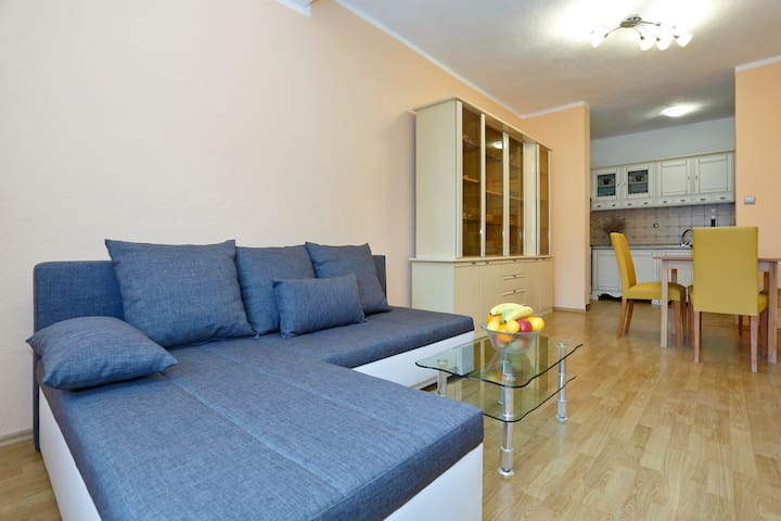 Nice & spacious apartment near sea - Karin Gornji - Byt