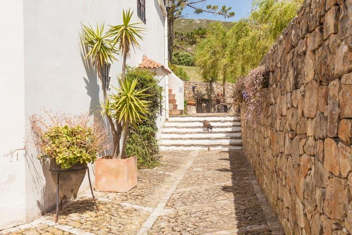 Amplio Duplex, tranquilo, reformado y romantico. - Campo de Gibraltar - Appartement
