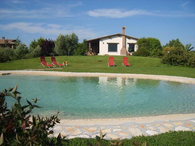 appartamenti in villa  - Monterosi