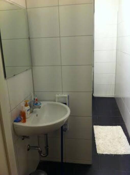 Badezimmer - es ist ein länglicher Raum. Nach der Waschbecken folgen Dusche und Toilette mit Heizung.