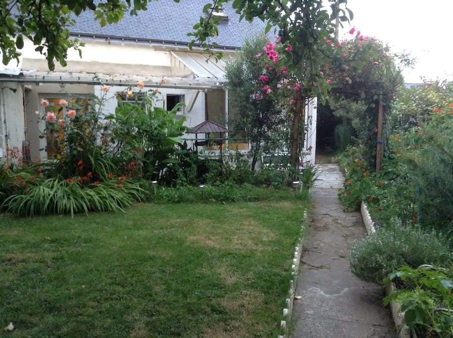 Small but beautiful south-west facing town garden with terrace and barbecue.