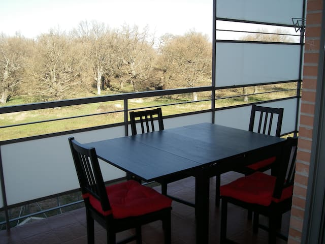 Bonito piso con piscina Rioja Golf - Cirueña - Appartement