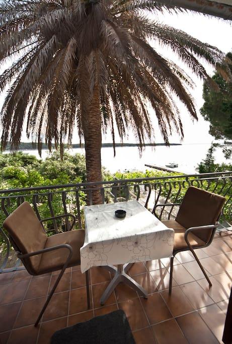 romantic balcony under the palm tree