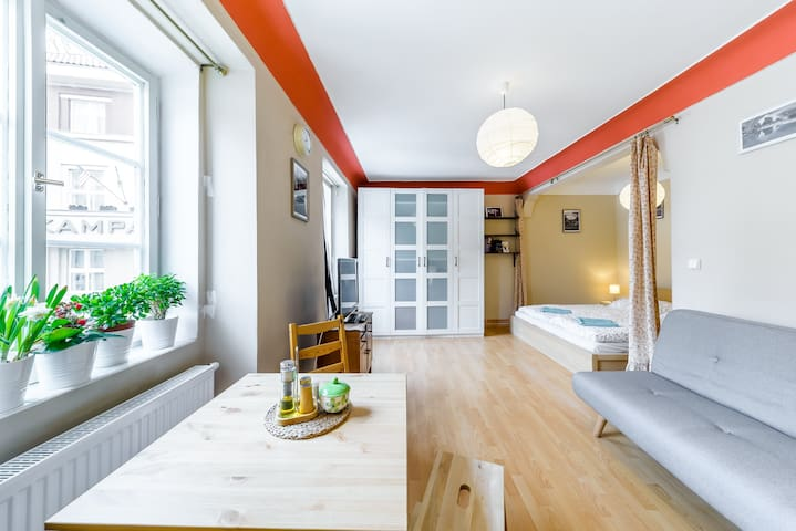 Cosy and Spacious Kampa apartment - just for you!