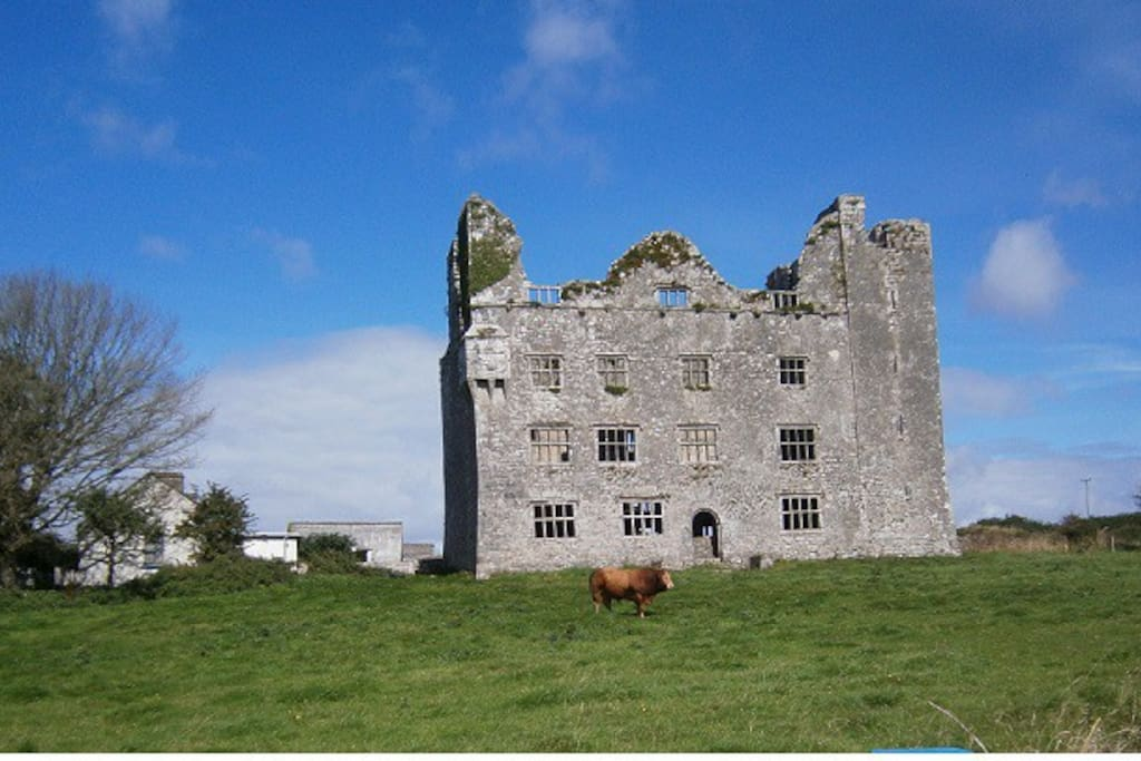 The ruins of leamaneh castle