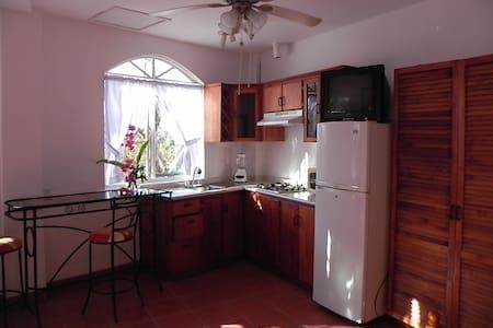 Studio Apart. in Playa Hermosa CR - Playa Hermosa - Lejlighed