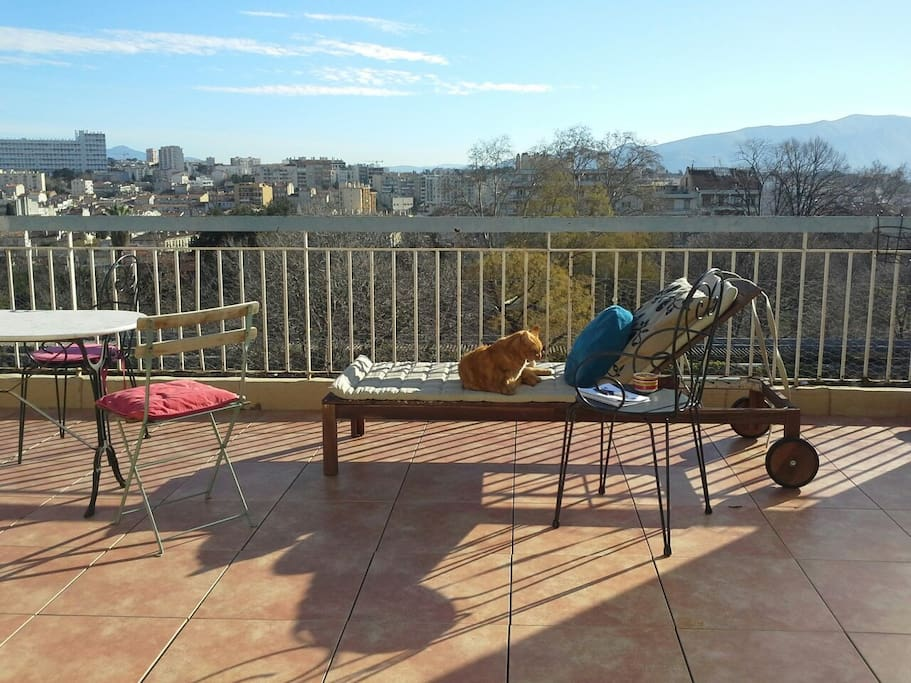 Sunny winter on the terrace