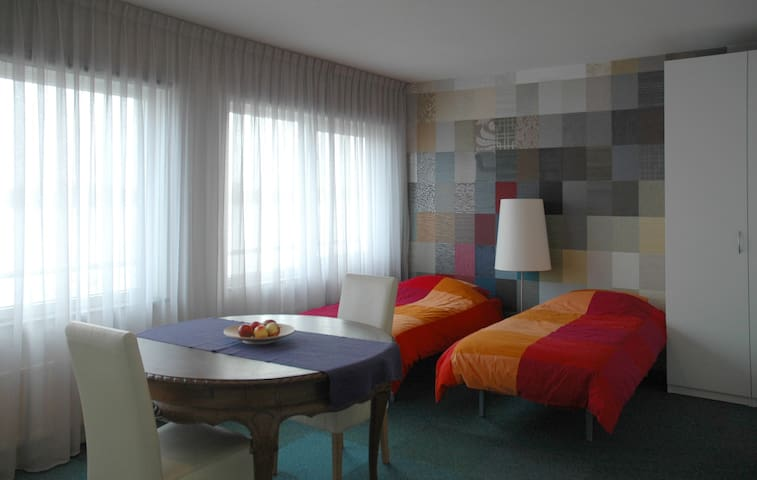 Spacious room close to center - Amsterdam