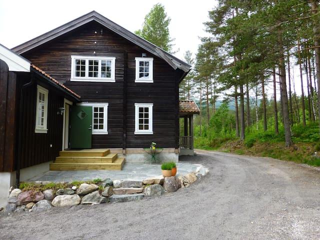 Charming Norwegian log cabin