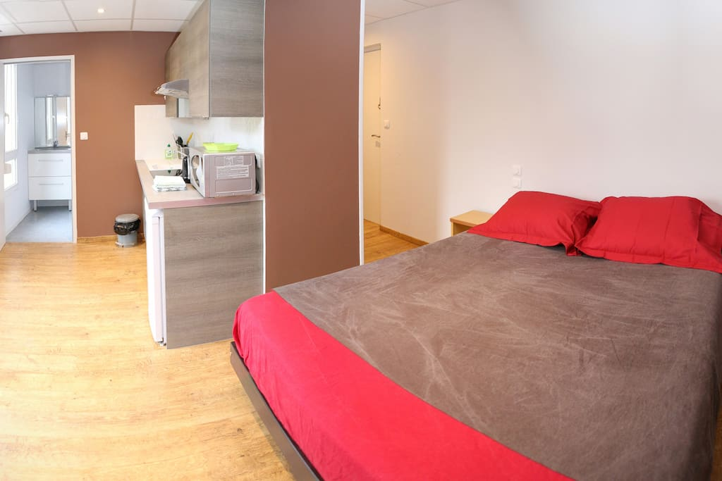 meubl de tourisme 3 toiles flats for rent in lyon
