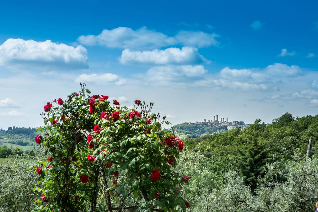 Typical Country House With Super Views Apartments For Rent In San Gimignano Toscana Italy