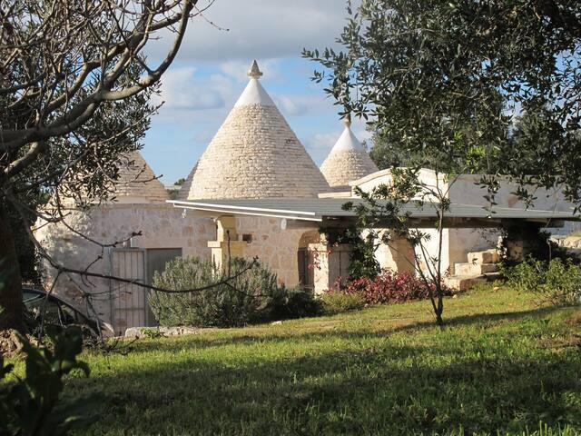Trullo Bianco - Cisternino - House