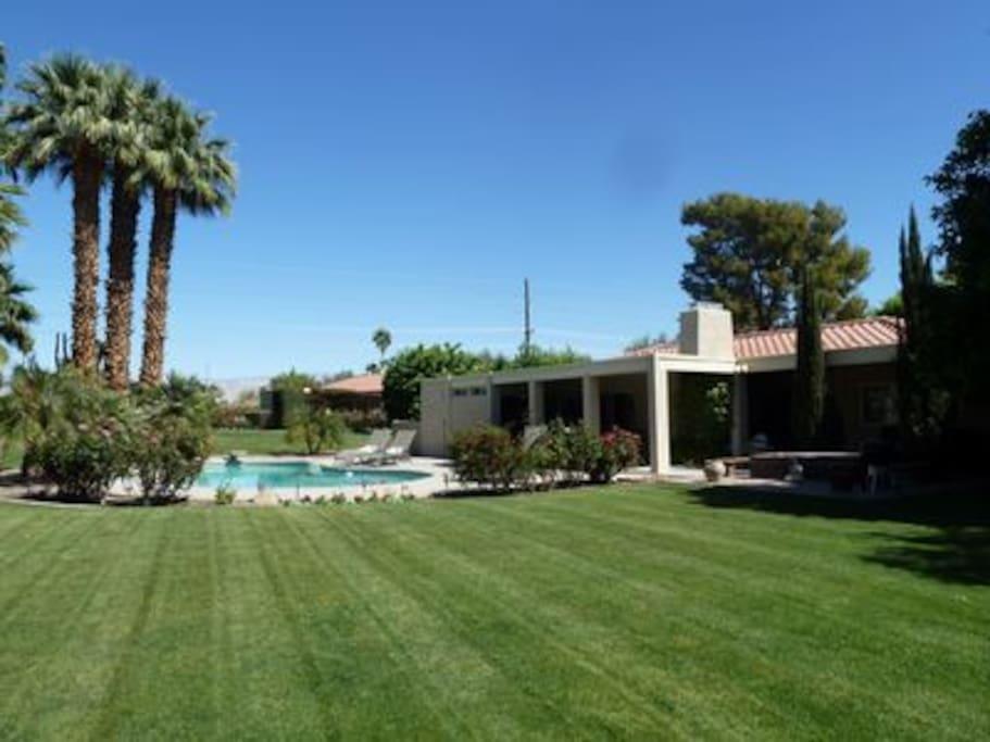 Large natural grass back yard
