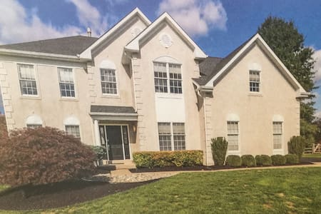 Large Basement suite/separate entry - Bryn Mawr