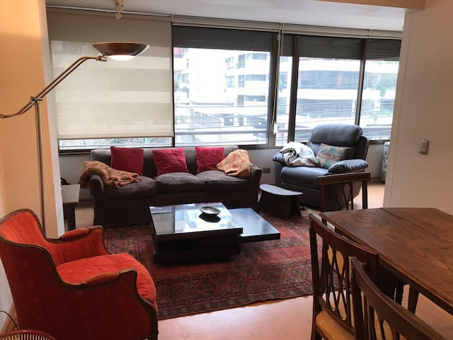 Studio near Bicentenario Park and shopping area