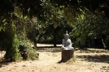 jardin (2000M2) et notre protecteur