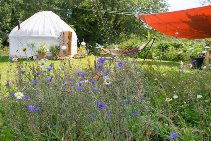Yurt in a secluded flower meadow