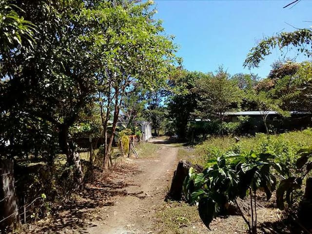 PARVA SED APTA MIHI, enjoy Ometepe! - Balque - Hus