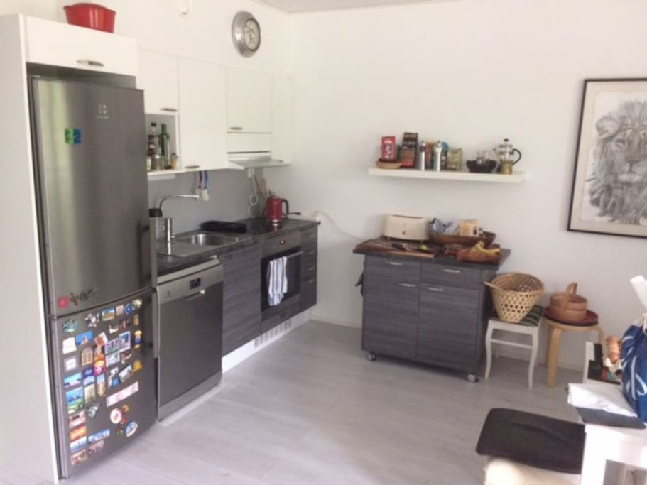 Fully equiped kitchen. Dish washer, refrigator and freezer.