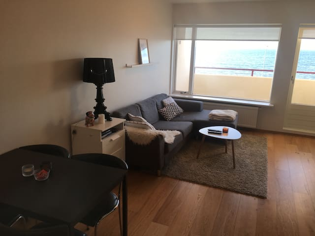 Cosy apartment near downtown Reykjavík