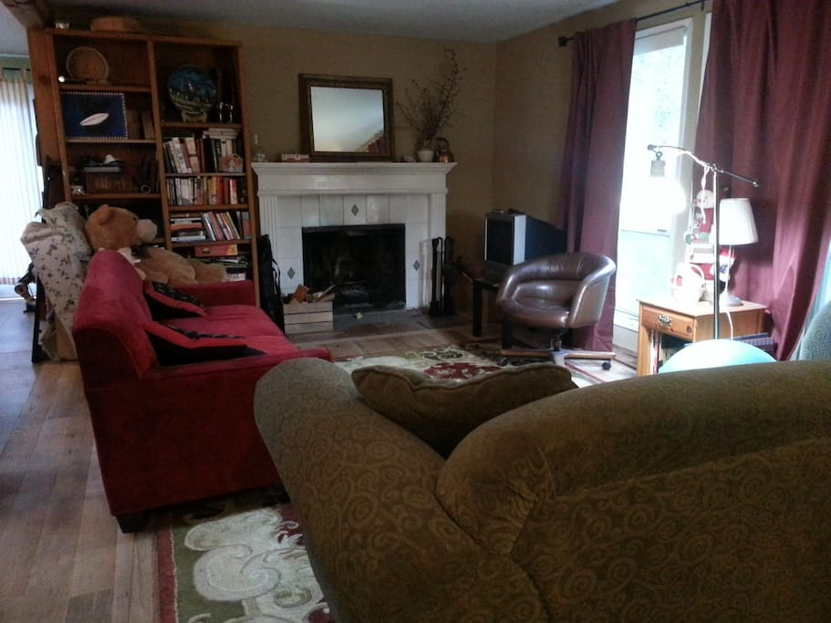 Shared living room, with fireplace, open to kitchen, bookshelves you're welcome to peruse, board games to play