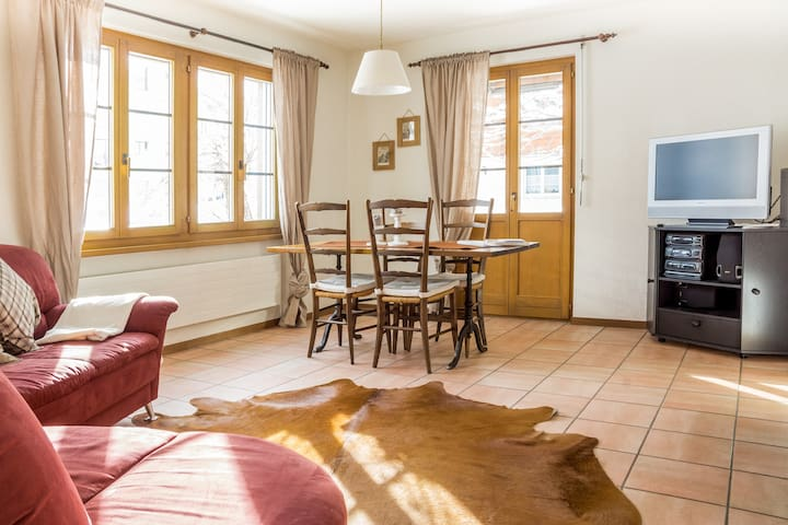 Little Gemsstock Apartment,2-4 beds - Andermatt - Apartamento