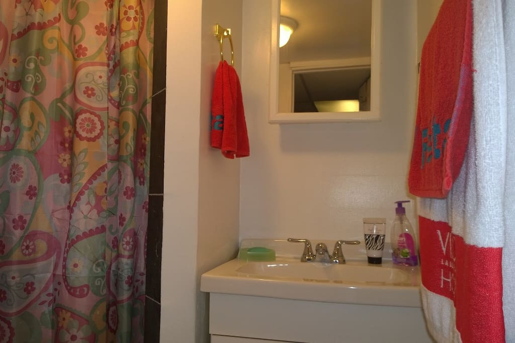Cozy bathroom with stand up shower, medicine cabinet and sink.