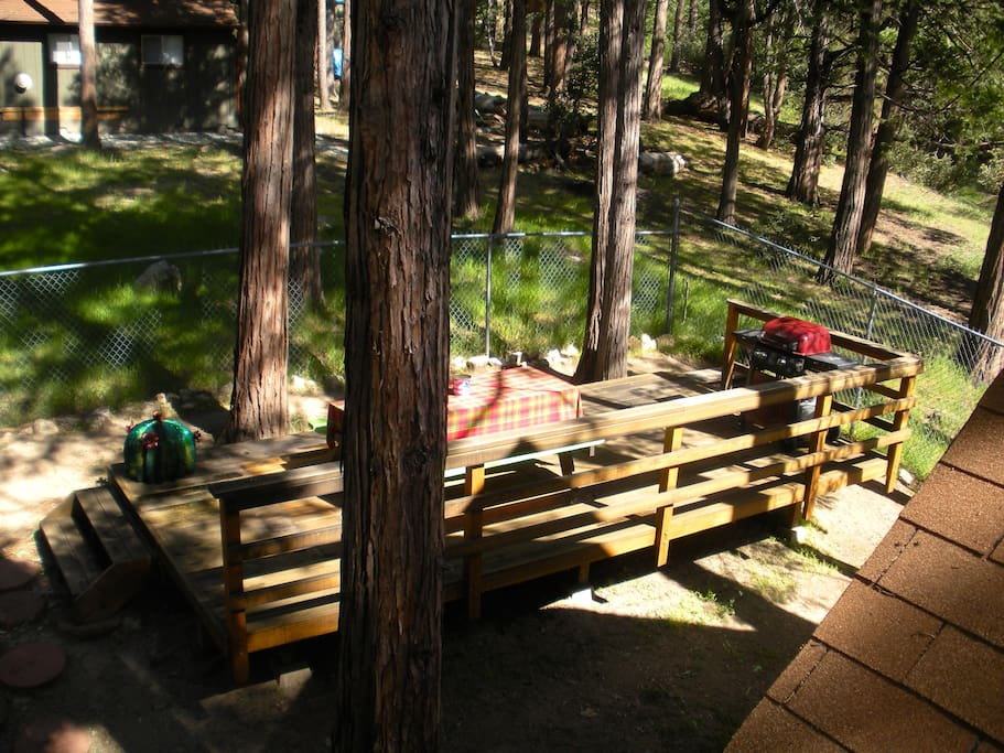 BBQ under the pines
