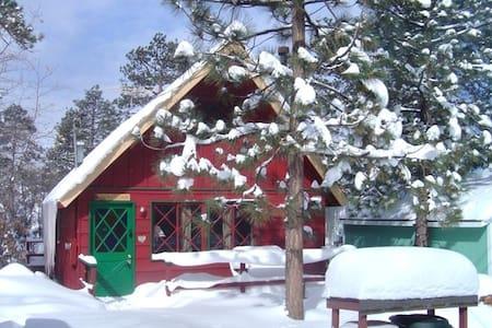 Cute and cozy Big Bear cabin! - Big Bear