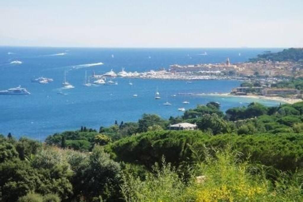 vue sur le Port de saint Tropez
