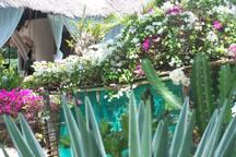 giardino 500mq
